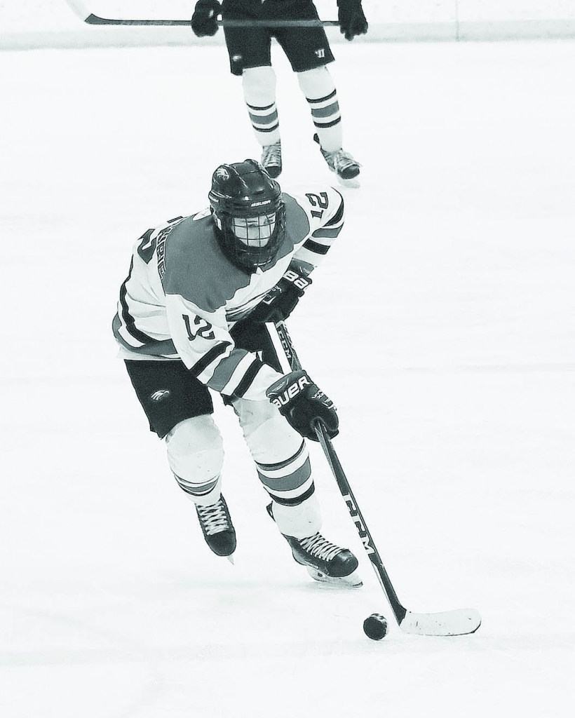 Sauk Prairie's co-op hockey team — which included skaters from Mount Horeb — enjoyed a memorable season.But the Eagles'...